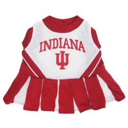 Indiana Hoosiers - Cheerleader Dog Dress