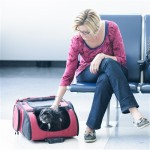 RC1000 Roller-Carrier for Pets up to 10lbs.
